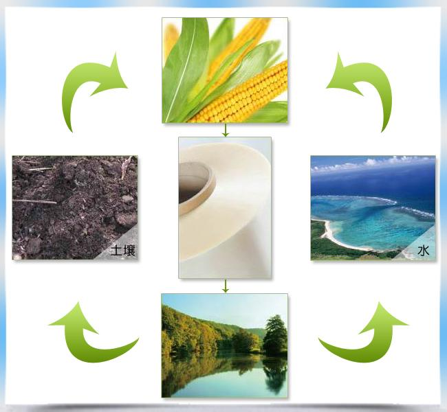 Eco - Friendly 100% Compostable Pla Biodegradable Film Custom Width For Package